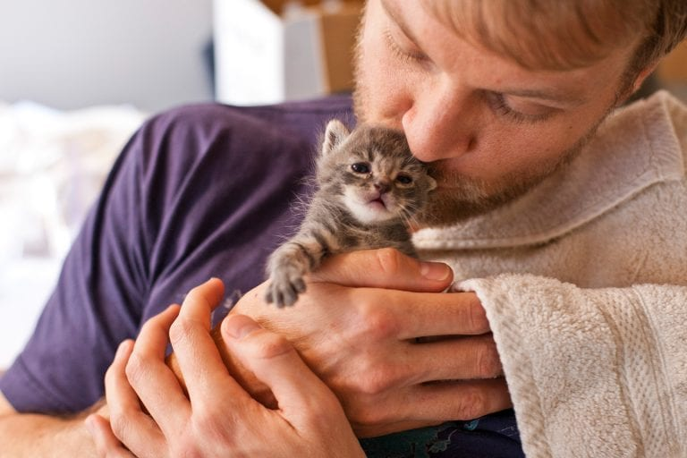 Bearded-man kissing tiny gray kitten