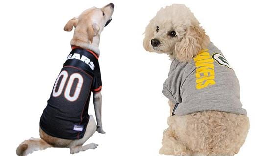 Two dogs wearing NFL shirts