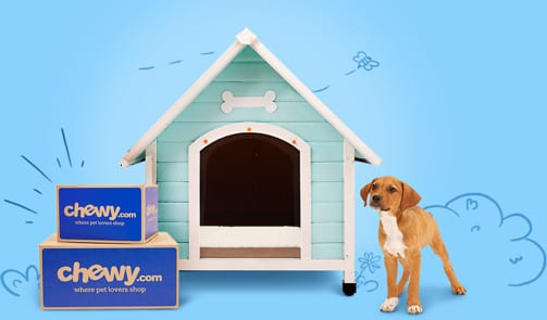 Brown dog next to blue dog house with Chewy boxes out front