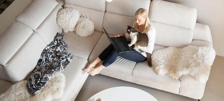 woman with cat on laptop